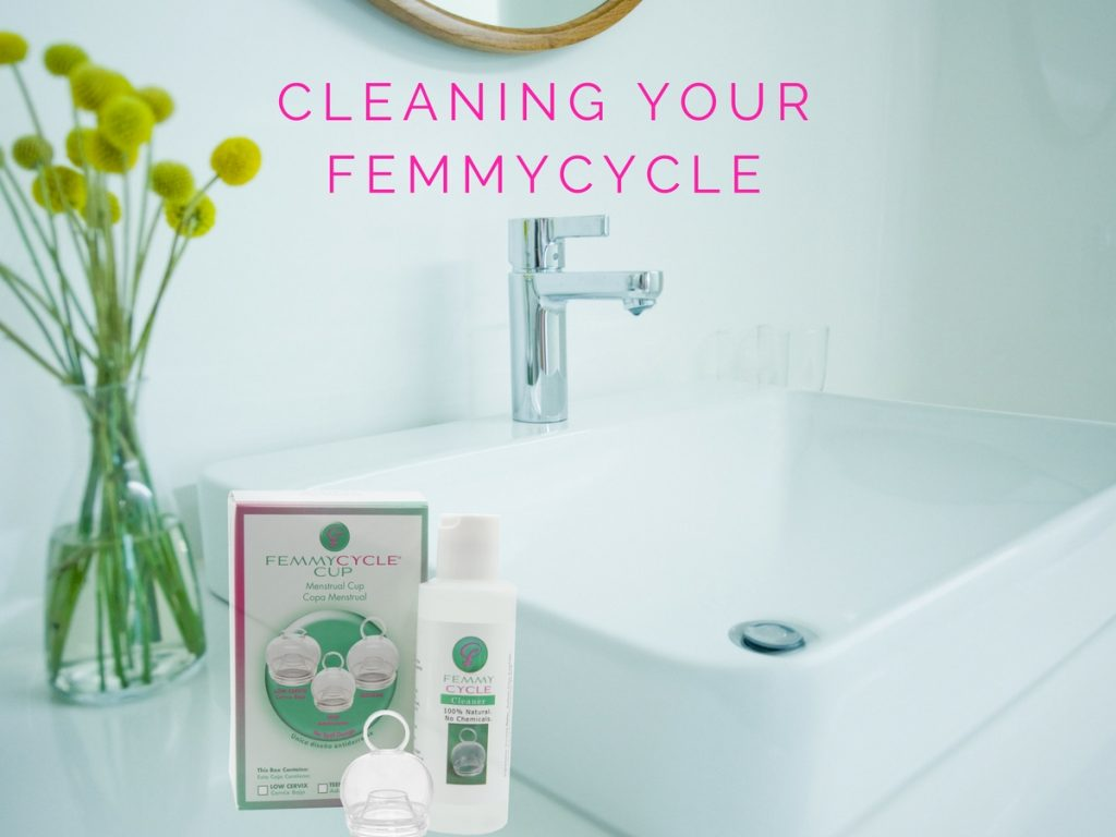 Cleaning the FemmyCycle