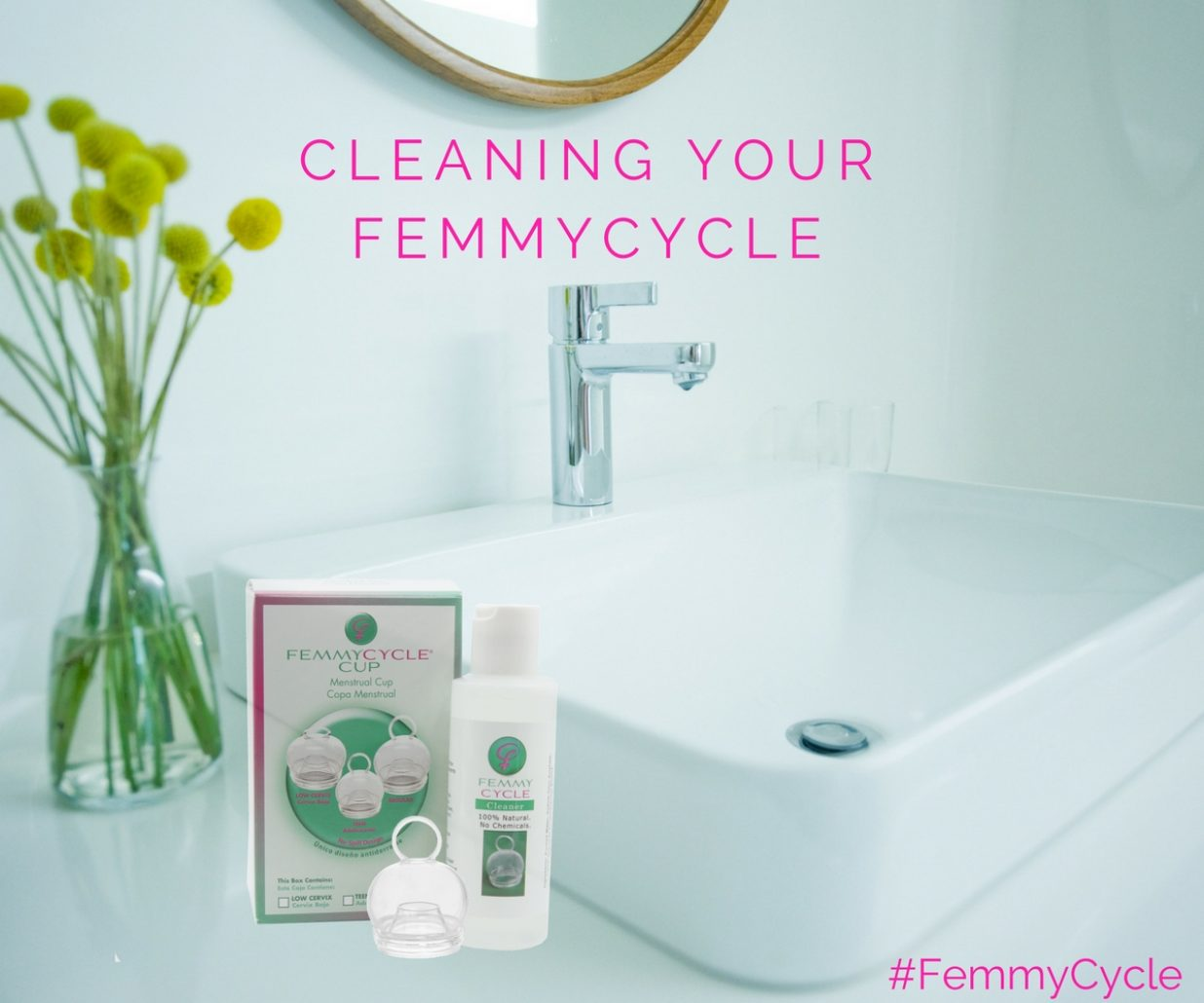 FemmyCycle, FemmyCycle Cleaner